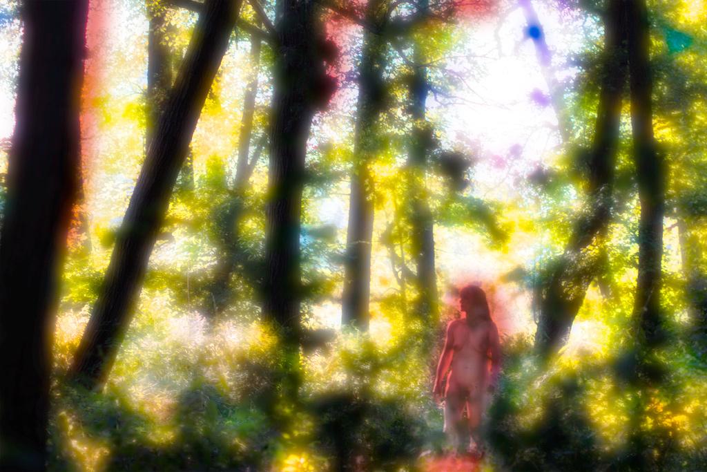 10 ManFox Wald
